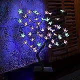 careslong Albero Luminoso Decorativo Lampada Fiori di Ciliegio, Tavolo Luce Bonsai, per Decorazione della Casa, Festa di Natale, Decorazione del Matrimonio, Compleanno, Interno (multicolore)