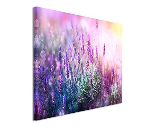 Modernes Bild 120x80cm Naturfotografie - Blühender Lavendel in der Sonne