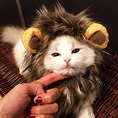 CreaTion® Pet Cat Cosplay Costume Lion Mane Wig Hat for Cat or Small Dog Dress up with Ears