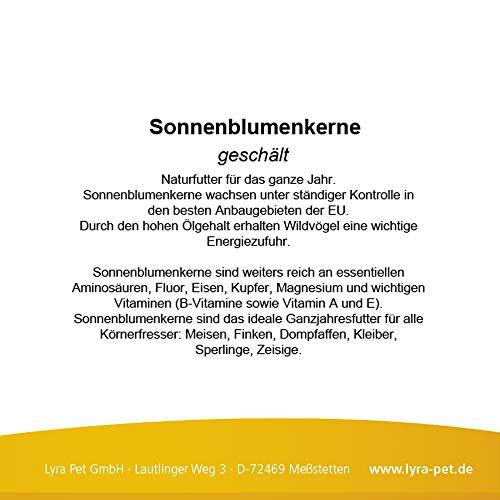 25 kg Sonnenblumenkerne geschält - 3