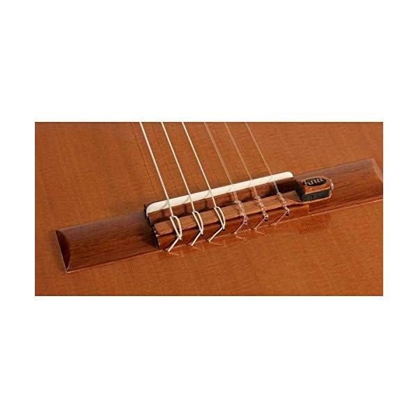 Rinnovamento per chitarra classica e flamenca