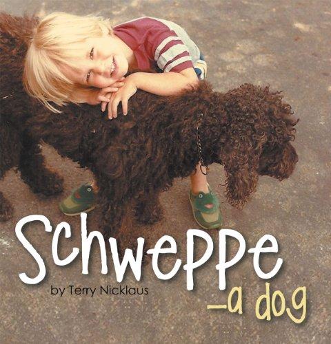schweppe-english-edition