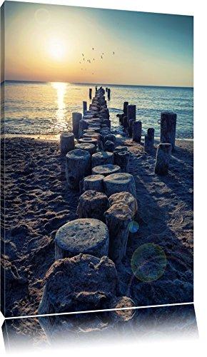 Baumstümpfe am Meer Format: 60x40 auf Leinwand, XXL riesige Bilder fertig gerahmt mit Keilrahmen, Kunstdruck auf Wandbild mit Rahmen, günstiger als Gemälde oder Ölbild, kein Poster oder Plakat