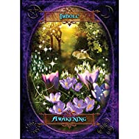 Witches Wisdom Oracle Cards-48 Cards-Card Deck and Guide