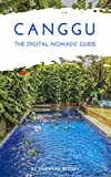 Canggu The Digital Nomads' Guide: Handbook for Digital Nomads, Location Independent Workers, and Connected Travelers in Indonesia (City Guides for Digital Nomads 6) (English Edition)