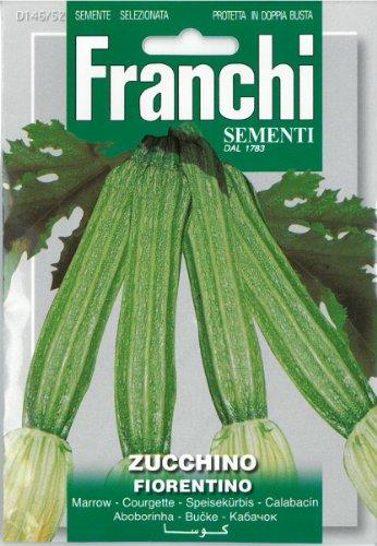 Franchi Courgette???Zucchino Fiorentino