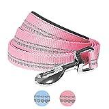 Blueberry Pet 2,5 cm by 120 cm Länge 3M Reflektierende Hundeleine in Pastellfarben Baby-Pink mit Neopren Gepolsterter Schlaufe, Passendes Halsband und Geschirr Separat Erhältlich