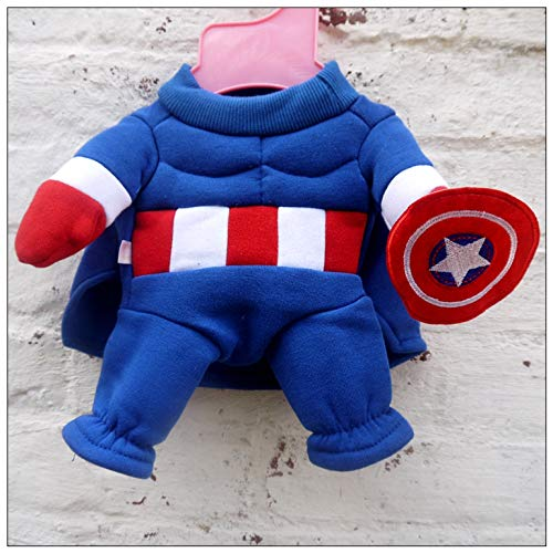 Captain America Hund Kostüm