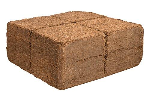 Humusziegel 1 block- 70 Coconut Litter for Reptiles, Terrarium Substrate, Terrarium Bedding, Ground Coconut, Tortoise… 4