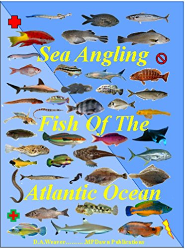 Sea Angling Fish of the Atlantic Ocean (English Edition) eBook ...