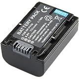 Troy - Batterie Li-Ion pour Sony NP-FV50, pourle Caméscope Sony DCR-DVD110, DCR-DVD410, DCR-SR15E, DCR-SX15E, DCR-SX40E, HDR-CX100E, HDR-XR200VE