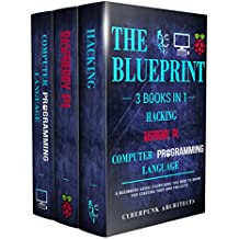 RASPBERRY PI & HACKING & COMPUTER PROGRAMMING LANGUAGES: 3 Books in 1: THE BLUEPRINT: Everything You Need To Know (CyberPunk Blueprint Series) (English Edition)