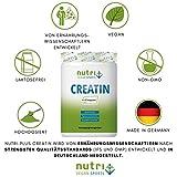 Nutri-Plus Vegan Sports Kreatin Pur 100 + Dosierlöffel – Ultrafeines Creatin-Monohydrat 500g – Neutral – Ohne Zusatzstoffe - 3