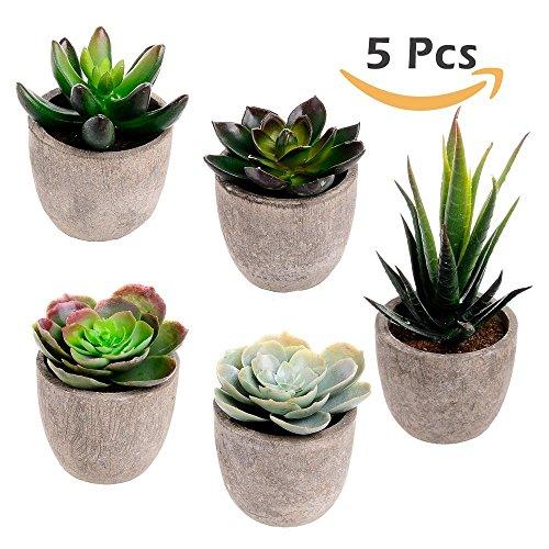 5er Set Sukkulenten 7 x 8cm Kunstpflanze Grün Weiß Kunstblume Deko mit grauen Töpfen (Kunstpflanze)