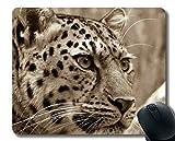 Yanteng Tapis de Souris antidérapant de pour Ordinateurs de Bureau, Tapis de Souris personnalisés en Oeil de Chat près du léopard