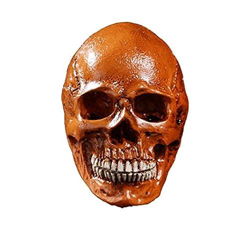 Homosapiens Schädel Statue Figurine Menschliche Skelett Kopf Dekor Rostfarbe