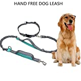 Hands Free Dog Lead for UP TO 150 lbs Large Dogs, Multifunctional Dog Leash Retractable , Heavy Duty DogRunning/ Training/Walking Lead with Nylon Rope, Durable Shock Absorbing Bungees,Gray and Blue