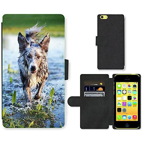 Just Mobile pour Hot Style Téléphone portable étui portefeuille en cuir PU avec fente pour carte//m00139228jouer pour chien action Eau Wet Pet//Apple iPhone 5C