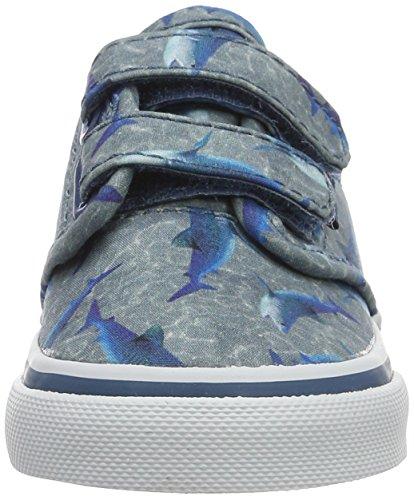 Vans Td Atwood V, Chaussures Marche Bébé Garçon Bleu (Sharks)