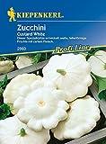 Zucchini: Custard White/Ufo weiß, Cucurbita pepo - 1 Portion