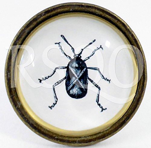 ceramic-animal-door-knobs-drawer-pulls-cupboard-door-knobs-glass-handles-glass-beetle