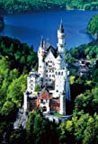 S72-519 2000 Small piece Neuschwanstein Castle (japan import)
