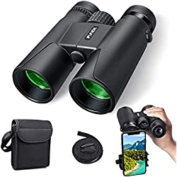 Jumelles pour Adultes, Jumelles compactes 10x42 HD avec Support de Smartphone pour l'observation des Oiseaux, Le Camping, la randonnée pédestre-BAK4 Prism FMC avec Jumelles à Sangle (Black-1)