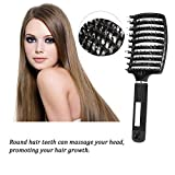 Hair Brush with Soft Bristles Wet and Dry Detangler Flex Vented Blow Dry Hair Brush Anti-Static Boar Bristle Hair Brush Curved Scalp Massage hair brush Long Curly Paddle Hair Brush for All Hair Types