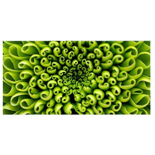 banjado Glas Nischenrückwand für Küche 100cm x 50cm   Küchenrückwand mit Motiv Grüne Chrysantheme   Spritzschutz selbstklebend ohne Bohren   Fliesenspiegel magnetisch und beschreibbar