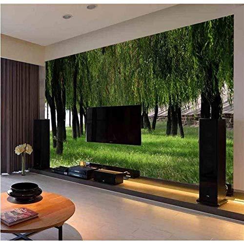 Qwerlp Benutzerdefinierte Wandbild 3D Fototapete Wohnzimmer Sofa Hintergrund Tapete Weidenwald Und Wiese 3D Bild Tapete Wohnkultur-200X140Cm -