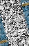 International Exhibition: attitude of America (English Edition)