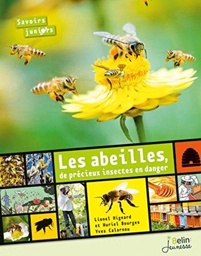 Les abeilles, de précieux insectes en danger. Nouvelle édition