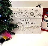 Troutflies UK Boxed Fishing Flies Forellenfliegen 12 Tage Weihnachten Adventskalender Angelfliegen
