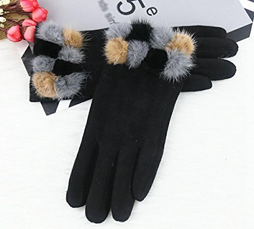 Longless Lady Frühling und Herbst Winter fahren Radfahren Non-Slip Touchscreen Plüsch dicker warme Handschuhe (North The Face Slip)