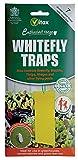 Vitax Trampa para moscas blancas, 7