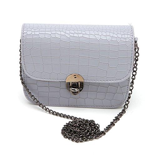 Dairyshop Borsa della borsa della borsa della borsa della borsa della borsa della spalla della borsa della spalla della signora delle donne nuovo (Beige) Grigio