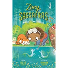Merhorses and Bubbles (Zoey and Sassafras, Band 3)