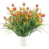 Suchergebnis Auf Amazon De Fur Blumen Balkon Orange Kuche