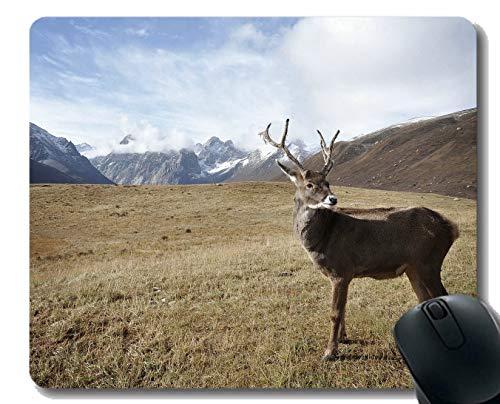Rutschfeste Mausunterlage für Desktops, Wilderness Wild Arctic-Stitched Edges