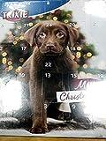 Trixie 9268 TRIXIE Adventskalender für Hunde, 30 × 34 × 3,5 cm