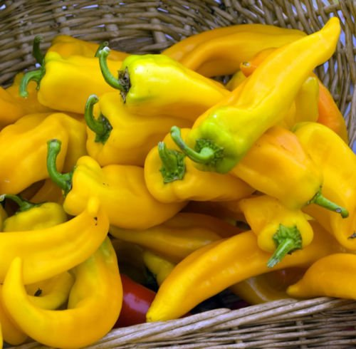 Hungarian spicy yellow pepper seeds, for soups ! nice present!, 20 semi