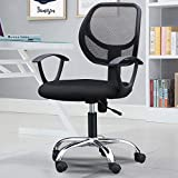 Generic Office Chair Ergonomics Review and Comparison