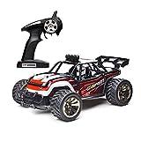 Demaxis Rc Auto Elektro Off Road, 2wd Offroad Rc Desert Buggy Monster Truck Ferngesteuert Geländewagen, RTR Rc Car Truggy High Speed 15 km/h Erwachsene Outdoor(2 Batterien, Rot)