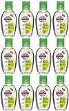 Sagrotan Hand-Desinfektionsgel Aloe Vera 600 ml 12er Pack zu je 50 ml