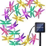Best Outdoor String Lights - Citra Dragonfly Solar String Lights, 20ft 20 LED Review