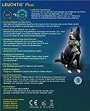 LED Leuchthalsband LEUCHTIE® Plus rot Größe 50 neues Verschlusssystem - 6