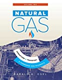 Natural Gas: Operations and Transport (English Edition)