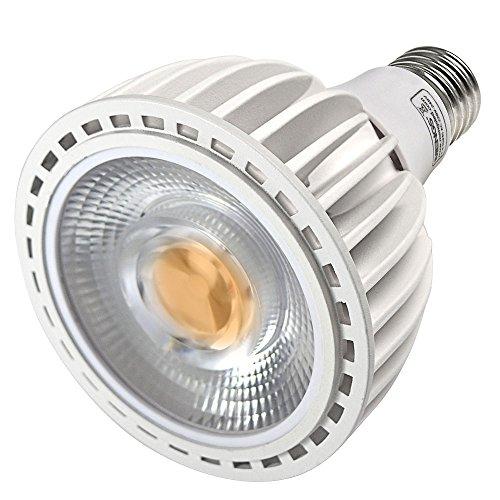 DASKOO E27 40W = 320W LED PAR30 Licht Aluminium + PC Kaltweiß COB LEDs 4000LM AC 220-240V (Track Par30)