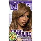 Dark & Lovely Color #380 Chestnut Blonde (Haarfarbe)