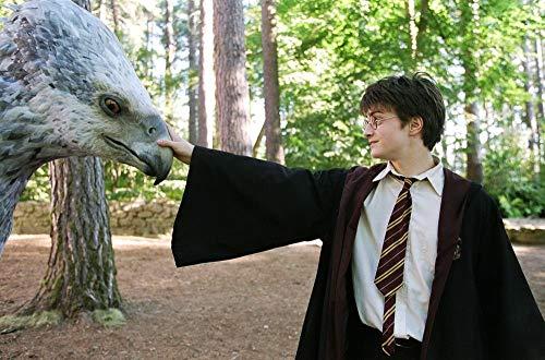 51zQsGo7G%2BL - Harry Potter Colección Completa Ed19 [DVD]